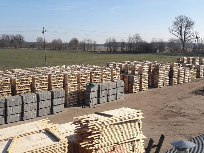 Brennholz & Kaminholz aus Kiefer - Holzhof