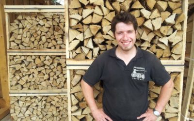 Vorteile von Brennholz aus Polen
